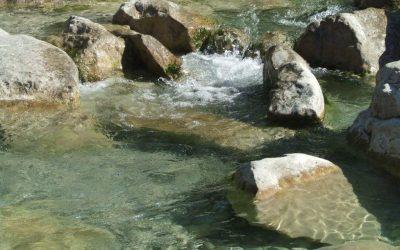 Pérégrinations aquatiques: Fraicheur et lumière dans les gorges du Toulourenc